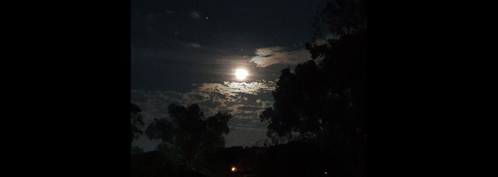 The Play of Night Light