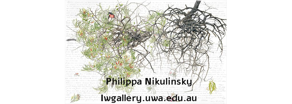Philippa Nikulinsky AM - A celebrated Australian wildlife artist