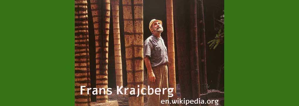 Frans Krajcberg: Eco Artist