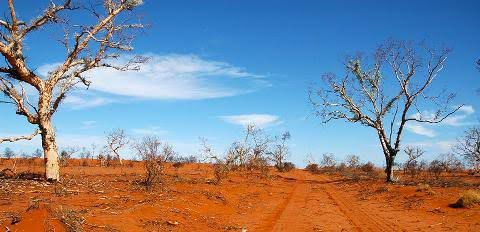 The great Victoria Desert