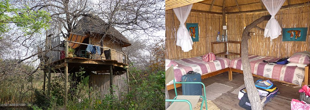 Escape to a Tree house in Africa
