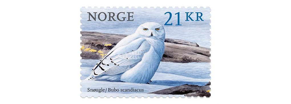 August 2020 MailBag No 1