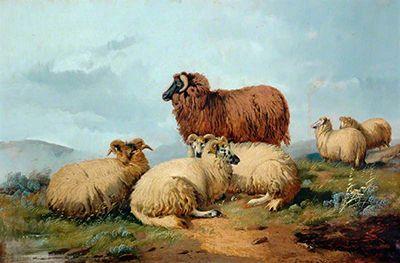Shhep in a landscape by Alfred Morris