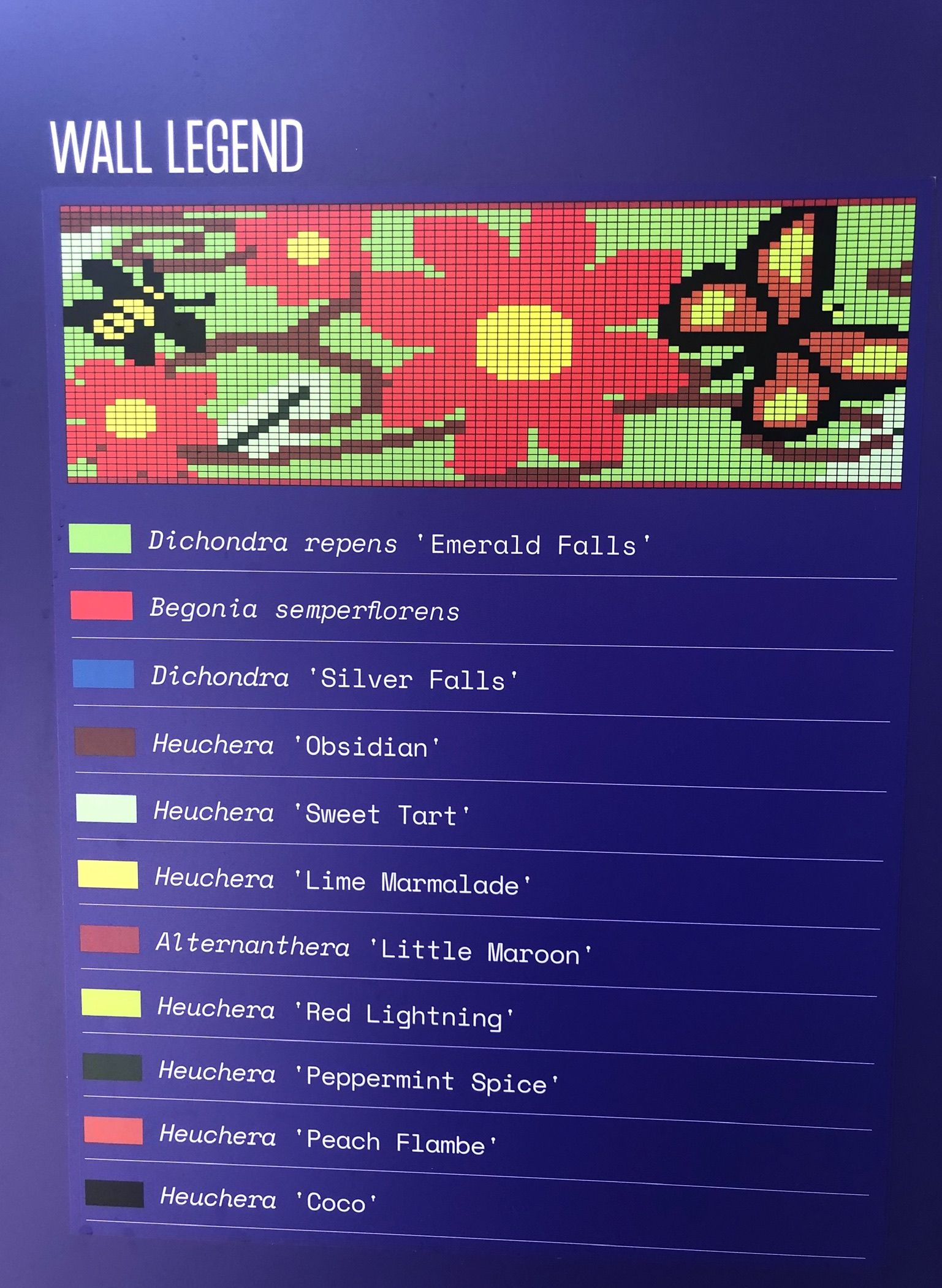 Wall chart showing the overall design and plantings
