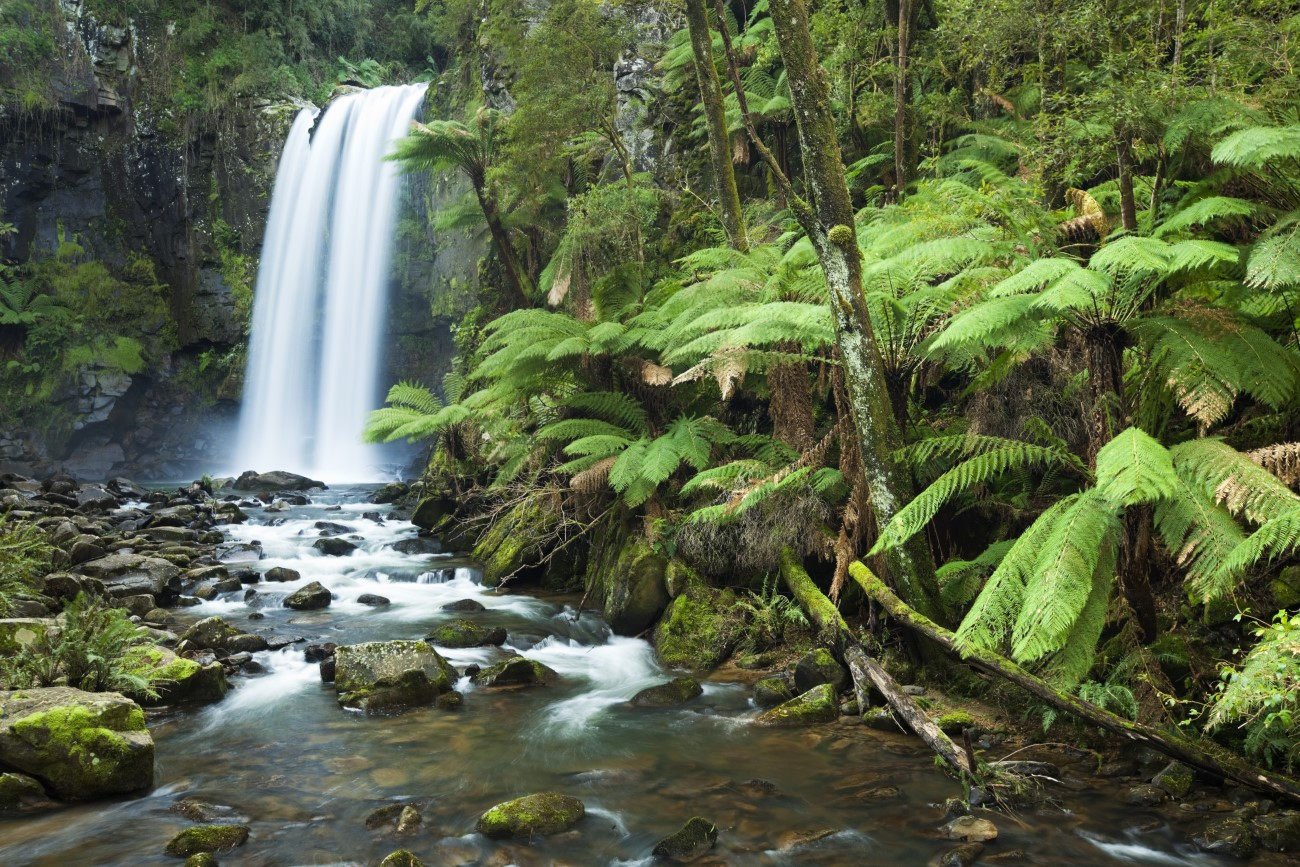 New Environment Protection Regulations will commence on 1 July 2021 as part of an overhaul of the environment protection legislative framework in Victoria.