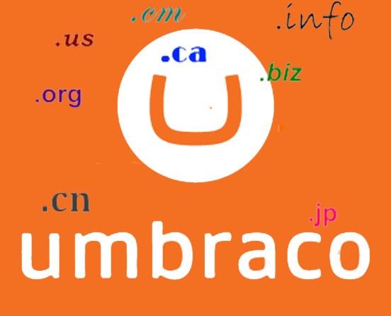 umbraco-multi-domain