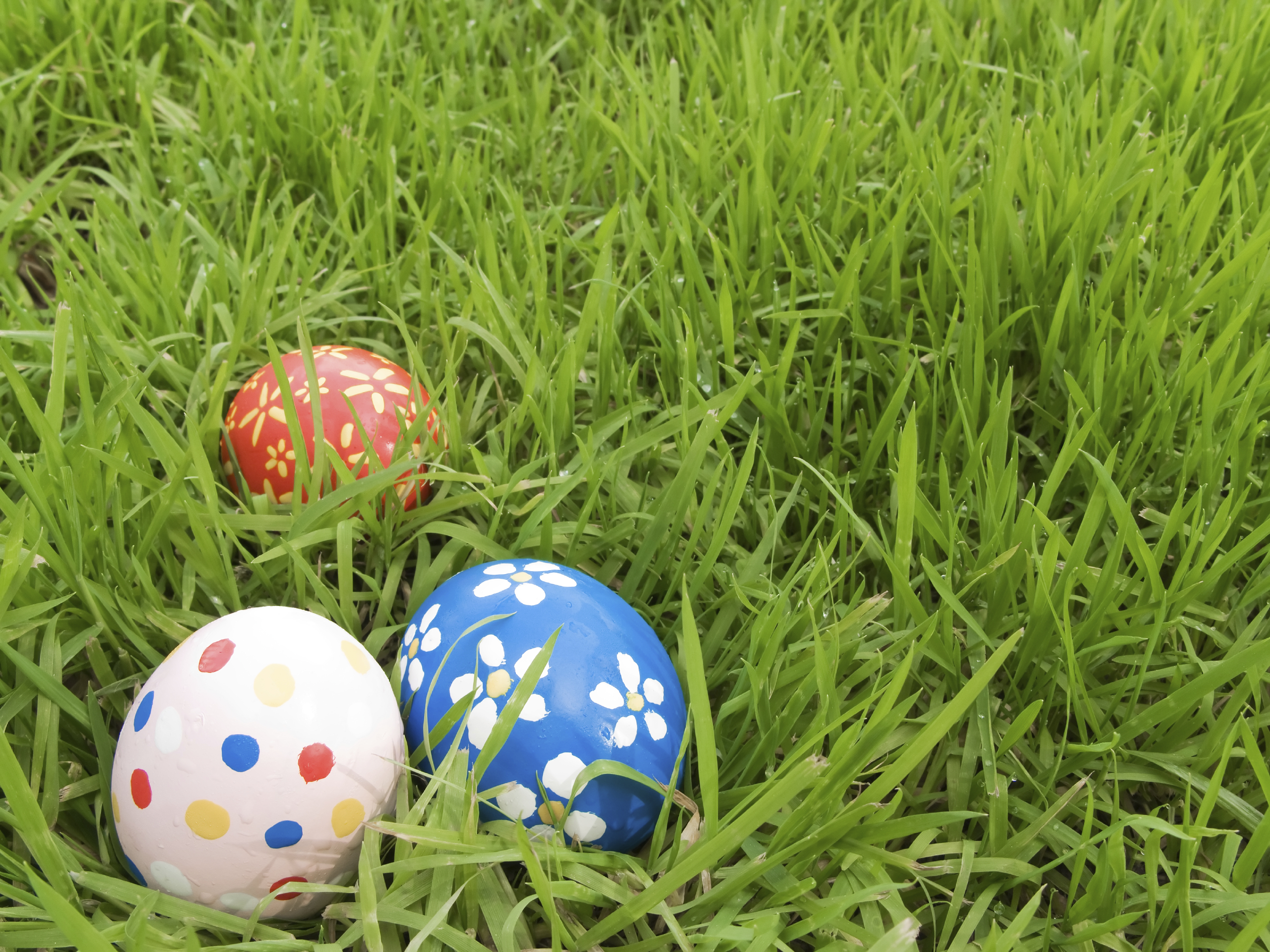 5 Savvy Tips For A Egg-citing Egg Hunt
