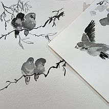 Learn to Sketch with Pen, Ink and Wash | One Day Workshop