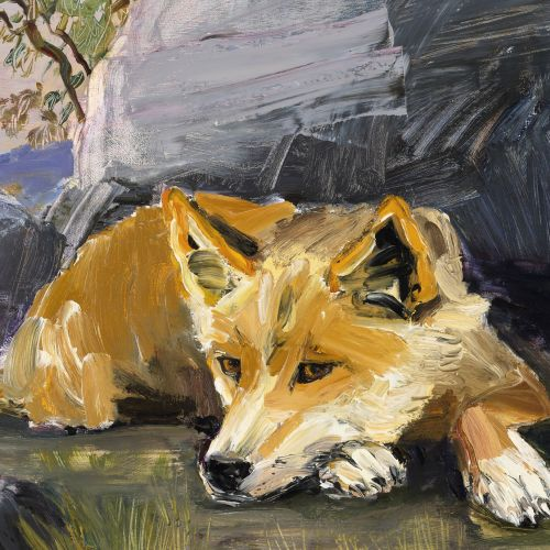 Expressive Painting   Dingos and Dogs with Tannya Harricks   8-12s