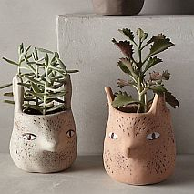 Ceramic Cute Critter Bowls | 5-7 years