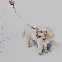 Watercolour | Painting Dogs One Day workshop | Susie Murphie