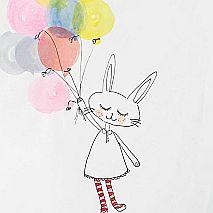 Paint | Run Rabbit Run Illustrations | 5-7 years