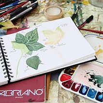 Watercolour | Painting Botanicals One Day Weekend Workshop with Jane Blundell