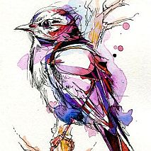 Painting | Illustrations in pen and watercolour | 10 +