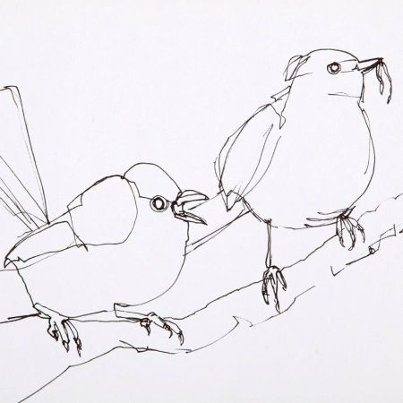 Expressive Drawing Workshops with Jody Graham |  1. Line + Variety