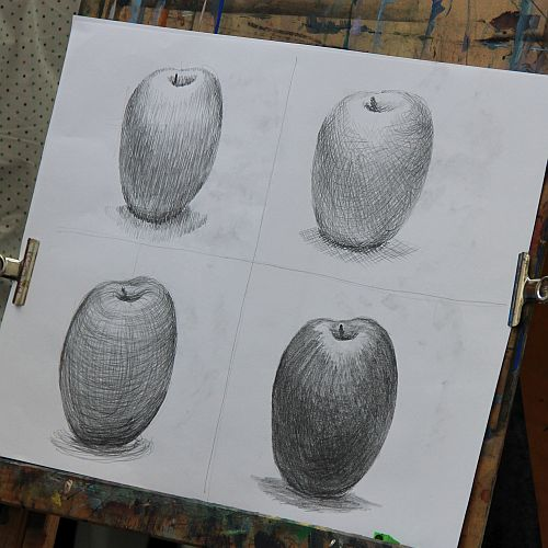 Drawing for Beginners with Dominique Millar