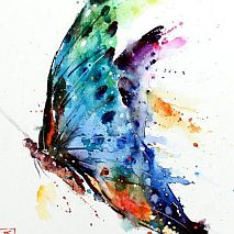 Draw+Paint | Big Expressive Moth and Butterfly | 8-12 years