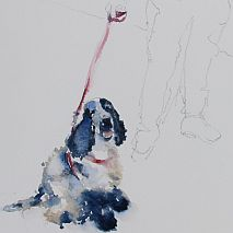 Watercolour | Painting Dogs, Cats and Other Pets | Susie Murphie