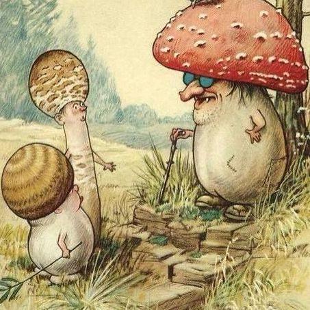 Creative Drawing   Fungi Folk   8-12 years