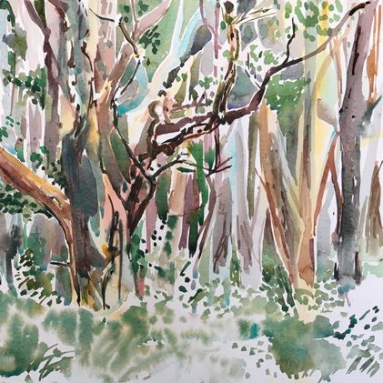 Loosening up and the Watercolour Sketch with Tanya Baily