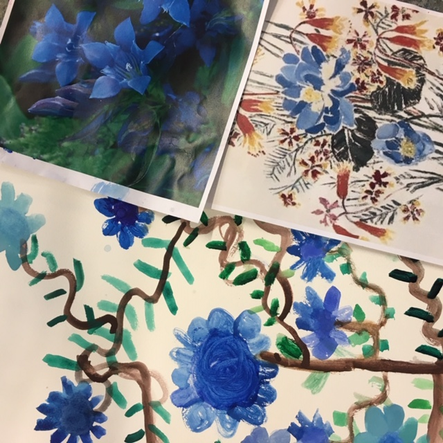 Paint | Beautiful Native Plants in Watercolour and Ink | 7-9 years