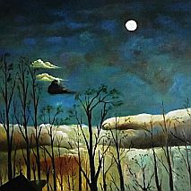 Paint | In the Nocturne | 7-9 years