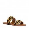 ROY  THONGS IN JUNGLE CAT