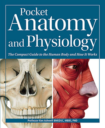 Pocket Anatomy & Physiology - Professor Ken Ashwell - 9780857624642 ...