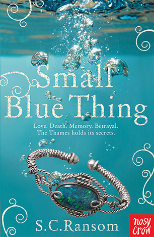Image result for small blue thing by s.c. ransom
