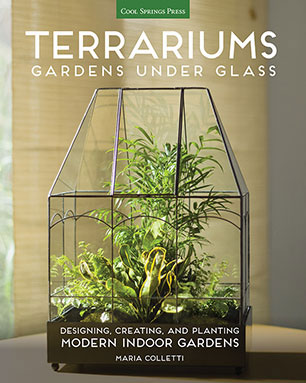 Terrariums Gardens Under Glass Maria Colletti 9781591866336