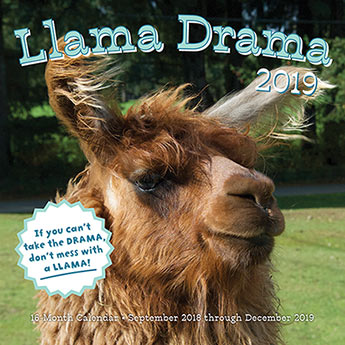 Llama Drama 2019 - Editors of Rock Point - 9781631064821