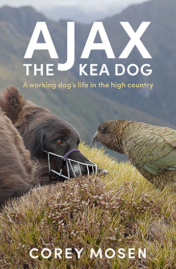 Ajax the Kea Dog