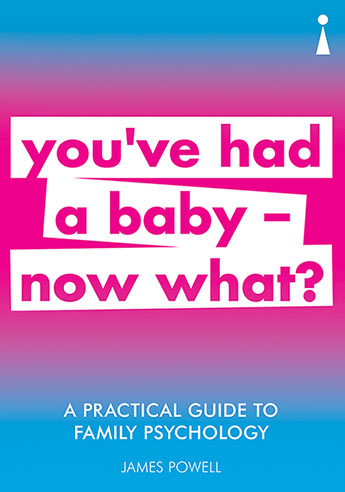 A Practical Guide to Family Psychology