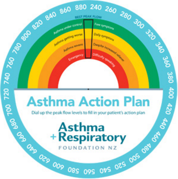 Asthma Action Plan Peak Flow Wheel