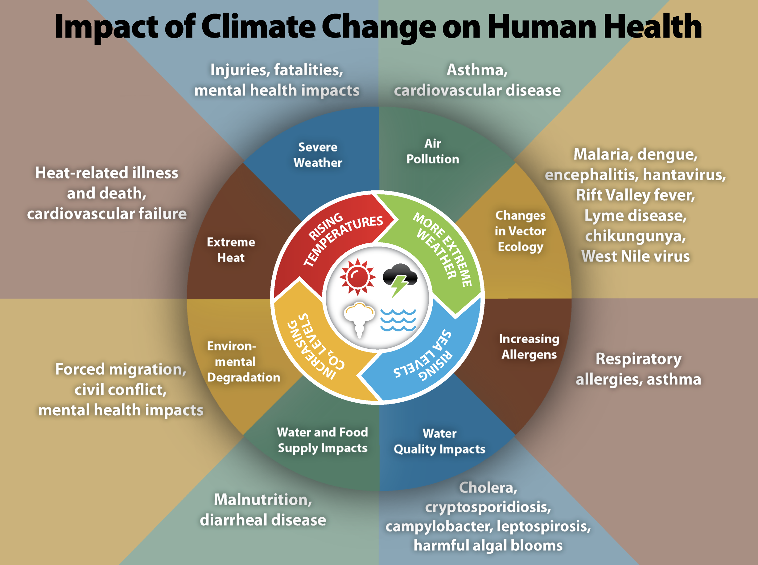 Impact-of-Climate-Change-on-Human-Health.png#asset:4097:url