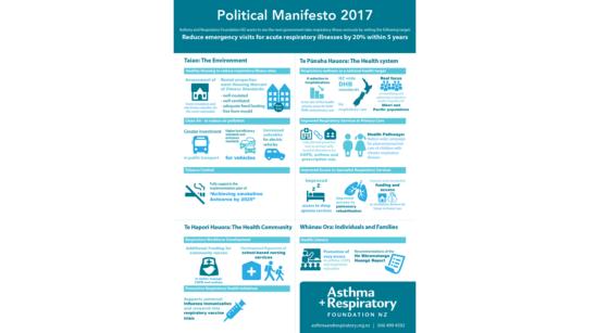 Political Manifesto 2017 Banner