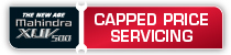 Capped Service