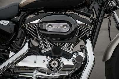 1200 cc Air-Cooled Evolution™ Engine