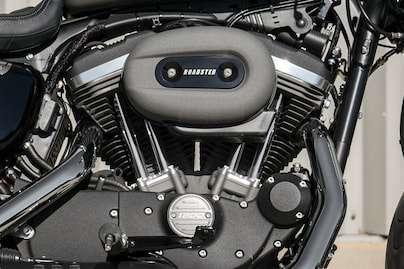 1200 cc Air-Cooled Evolution™ Engine