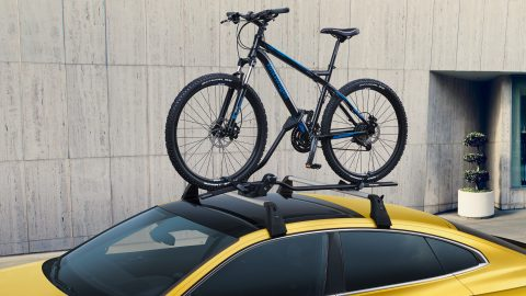 Arteon Bicycle carrier