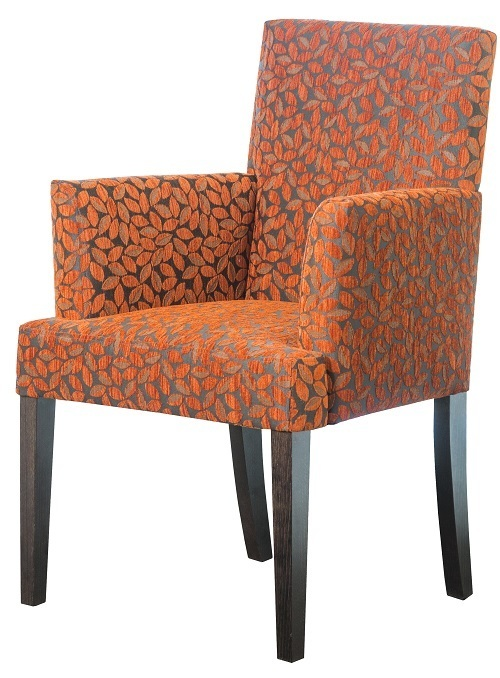 Occasional Aged Care Retirement Charlotte Arm Chair
