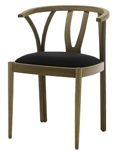 Retirement Dining Zidam Chair