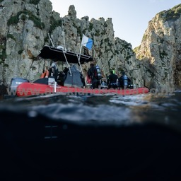 Kiwi Boat Charters Poor Knights Night Dive Special! 23rd March 2019