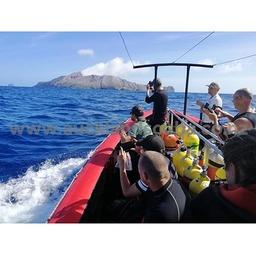 White Island Dive Trip