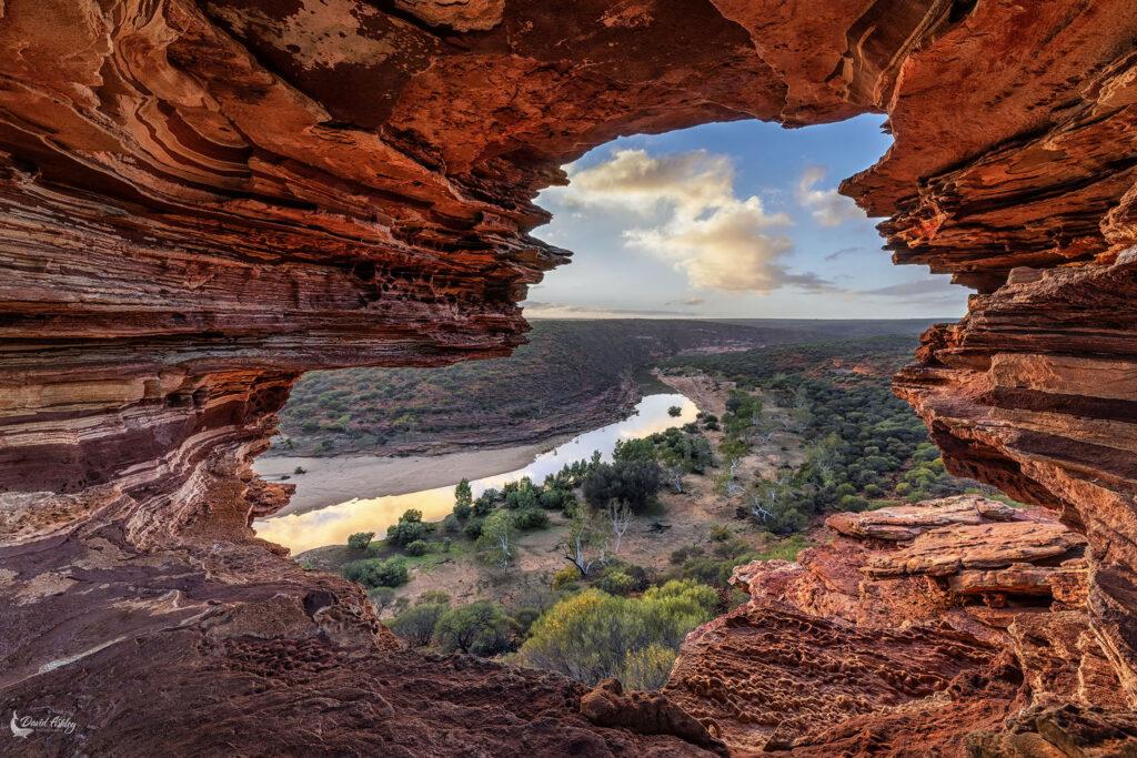 Natures Window by David Ashley, 2020 Winner