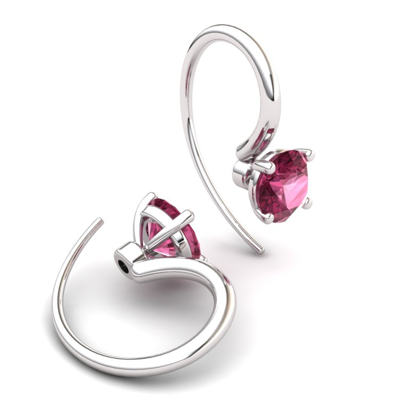 Garnet Spotlight Hook Earrings_image1