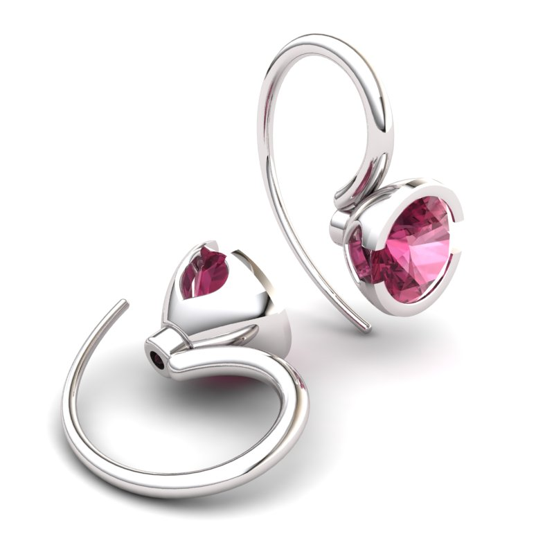 Garnet The Eye of Venus Hook Earrings_image2