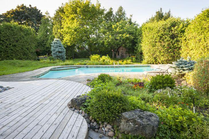 Pool surrounded by garden