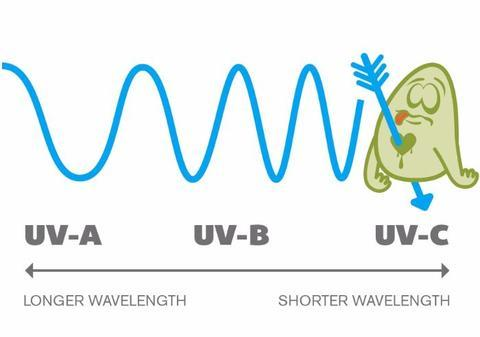 How do UV Sanitisers work? article main image