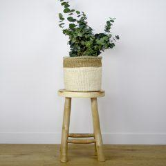 African Grass Basket